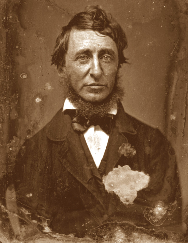 free characters on mark grievance thoreau